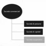 Cosa Fare per Costituire una Società Cooperativa
