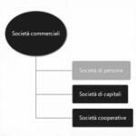 Cosa Fare per Costituire una Società di Persone